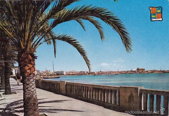 PALMA MALLORCA PASEO MARTIMO (ESCRITA) (Postales - España - Baleares Moderna (desde 1.940))
