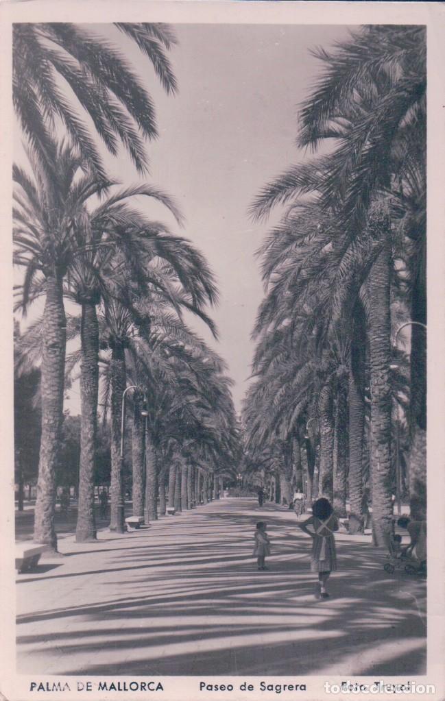 POSTAL PALMA DE MALLORCA - PASEO DE SAGRERA - TRUYOL - CIRCULADA (Postales - España - Baleares Antigua (hasta 1939))
