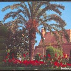 Postales: PALMA DE MALLORCA .- JARDINES DEL PASEO MARITIMO. Lote 98118135