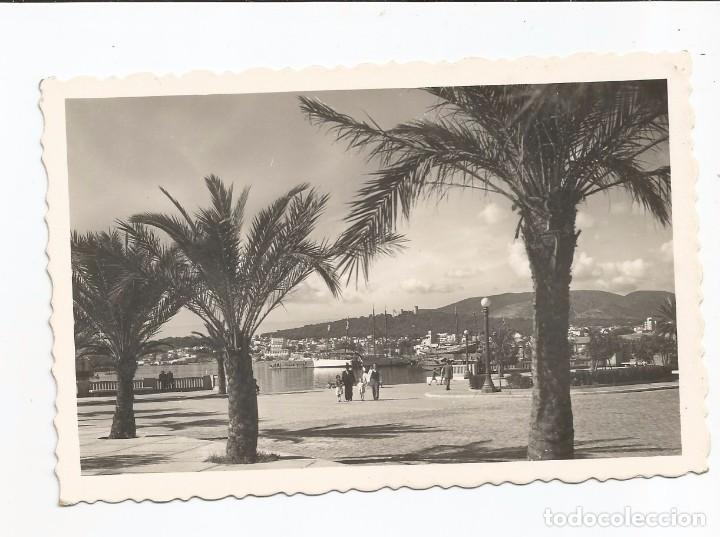 PALMA DE MALLORCA - EMBARCADERO DEL PUERTO - Nº 195 ED. ARRIBAS (Postales - España - Baleares Moderna (desde 1.940))
