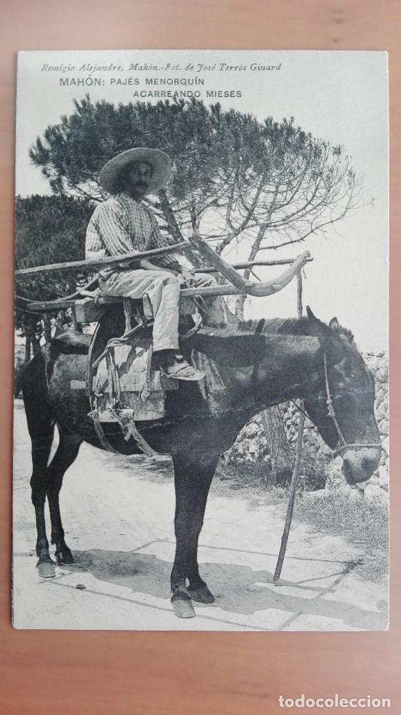 POSTAL BALEARES MAHON PAJÉS MENORQUIN ACARREANDO MIESES EDI REMIGIO ALEJANDRE HAUSER Y MENET MENORCA (Postales - España - Baleares Antigua (hasta 1939))