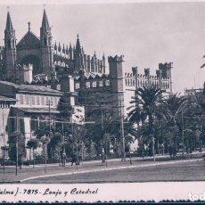 Postales: POSTAL MALLORCA - PALMA 7815 - LONJA Y CATEDRAL - ZERKOWITZ. Lote 113595299