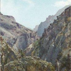 Postales: PICOS DE EUROPA REGION DE CAMARMEÑA - CANAL DE BULNES. Lote 116520435