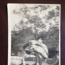 Postales: MALLORCA - OLIVOS - FOTO POSTAL CIRCULADA 1948. Lote 126993323