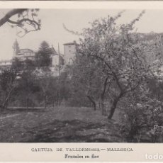 Postales: CARTUJA DE VALLDEMOSA, MALLORCA, FRUTALES EN FLOR. Lote 131148496