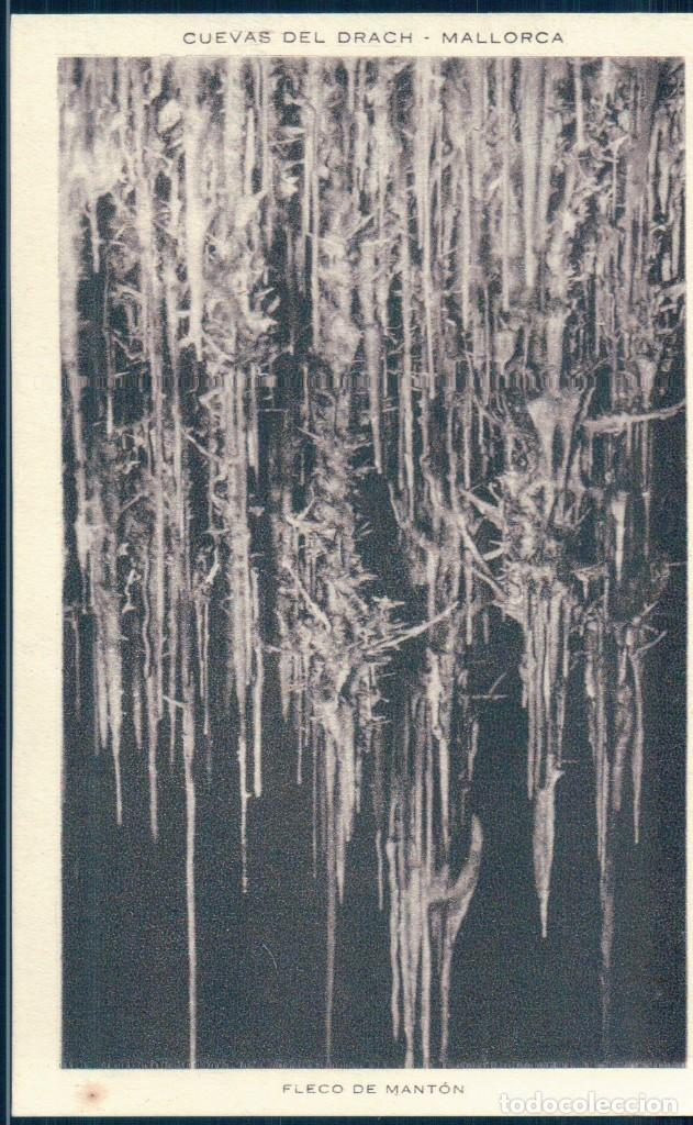 POSTAL MALLORCA - CUEVAS DEL DRACH - FLECO DE MANTON - CLISE SERVERA (Postales - España - Baleares Antigua (hasta 1939))