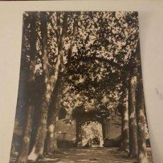 Postales: JARDINES DE ALFABIA MALLORCA. Lote 135797550