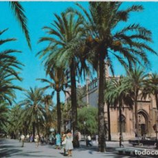 Postales: MALLORCA, PALMA, PASEO DE SAGRERA - CYP 385 - S/C. Lote 143095326