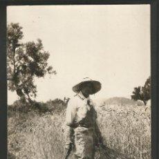 Postales: POLLENSA-TRABAJOS DEL CAMPO-FOTOGRAFICA-146 COL·BESTARD-POSTAL ANTIGUA-(56.598). Lote 149501066
