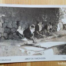 Postales: SOLLER MALLORCA BROT DE TARONGER FOTO NOGUERA - REVERSO CLUB DE ZWALUWEN. Lote 151165130