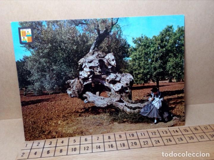Postales: LOTE 8 POSTALES DE MALLORCA (SIN CIRCULAR) - (AÑOS 70) - REF: 240/250 - Foto 11 - 164004506