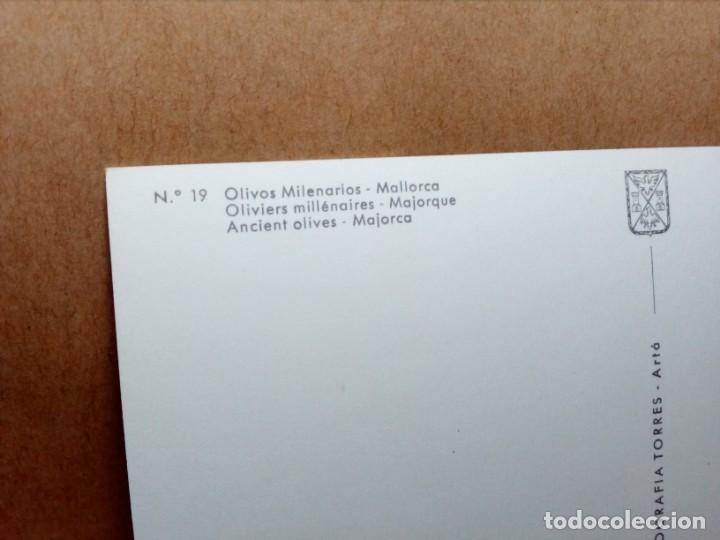 Postales: LOTE 8 POSTALES DE MALLORCA (SIN CIRCULAR) - (AÑOS 70) - REF: 240/250 - Foto 20 - 164004506