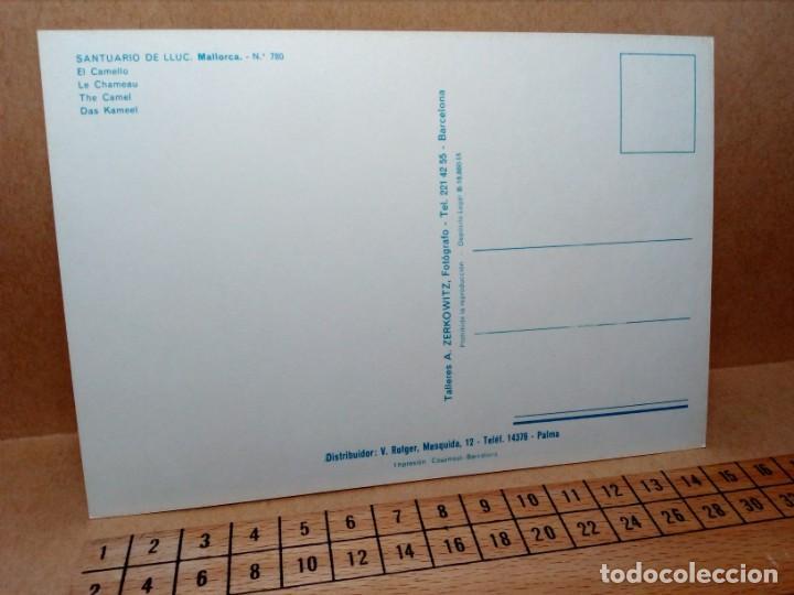 Postales: LOTE 8 POSTALES DE MALLORCA (SIN CIRCULAR) - (AÑOS 70) - REF: 250/260 - Foto 9 - 164004670
