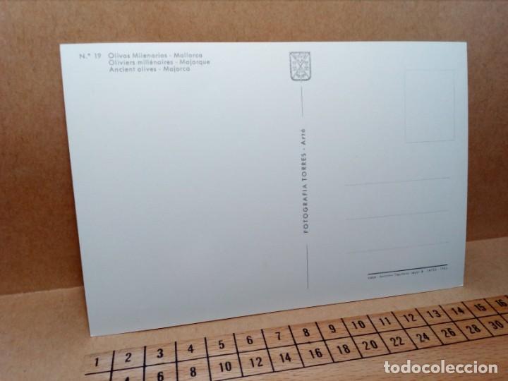 Postales: LOTE 8 POSTALES DE MALLORCA (SIN CIRCULAR) - (AÑOS 70) - REF: 250/260 - Foto 22 - 164004670