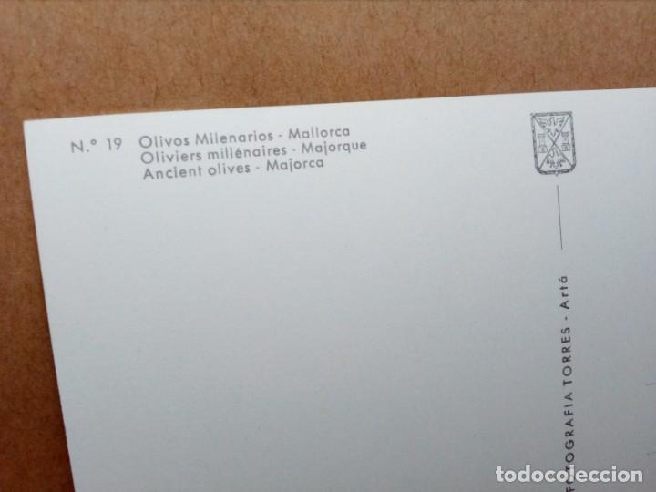 Postales: LOTE 8 POSTALES DE MALLORCA (SIN CIRCULAR) - (AÑOS 70) - REF: 250/260 - Foto 23 - 164004670