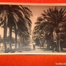 Postales: PALMA DE MALLORCA PASEO DE SAGRERA. Lote 169417908