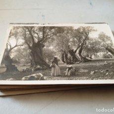 Postales: POSTAL ANTIGUA MALLORCA. POLLENSA. PAISAJE. BESTARD. . Lote 178055510