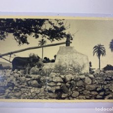 Postales: TARJETA POSTAL FOTOGRAFICA DE PALMA DE MALLORCA. FOTO BALEAR. VER FOTOS. . Lote 184910271