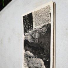 Postales: POSTAL ANTIGUA MALLORCA. LLOSETA. EL COCÓ. Lote 139887278
