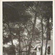 Postales: POSTAL FOTO EL ARENAL PALMA COPACABANA HOTEL DETALLE DEL PINAR ED. RUL-LAN RULLAN N° 14 MALLORCA . Lote 192852026
