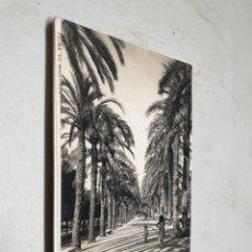 Postales: POSTAL ANTIGUA MALLORCA. PASEO SAGRERA TRUYOL. . Lote 195418025