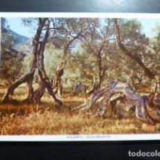 Postales: MALLORCA. Lote 198389462