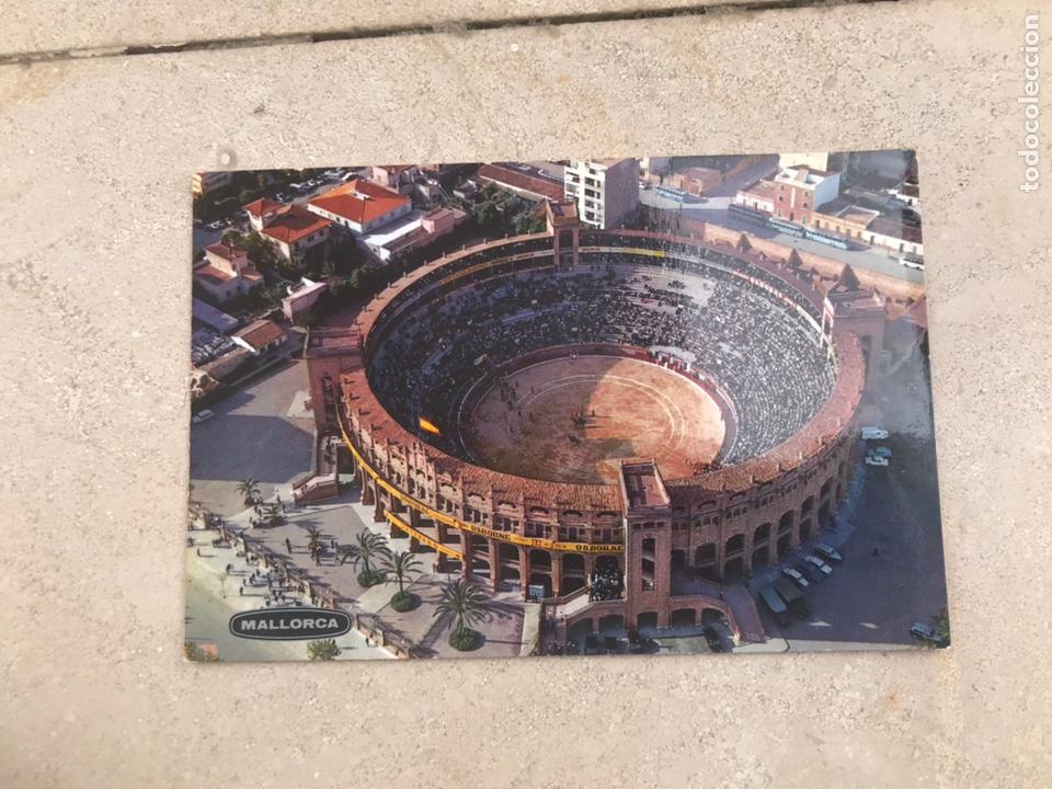 POSTAL PLAZA DE TOROS DE MALLORCA. (Postales - España - Baleares Moderna (desde 1.940))