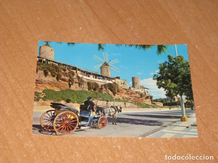 POSTAL DE PALMA DE MALLORCA (Postales - España - Baleares Moderna (desde 1.940))