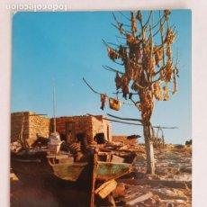 Cartes Postales: FORMENTERA - ESTURREN DE LALGA - LMX - IB1. Lote 213738335