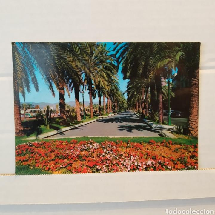 Postales: Gran lote de 15 postales de Malorca - Foto 14 - 216790251