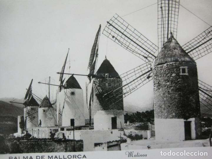 PALMA DE MALLORCA-MOLINOS-FOTOGRAFICA-POSTAL ANTIGUA-(74.749) (Postales - España - Baleares Antigua (hasta 1939))