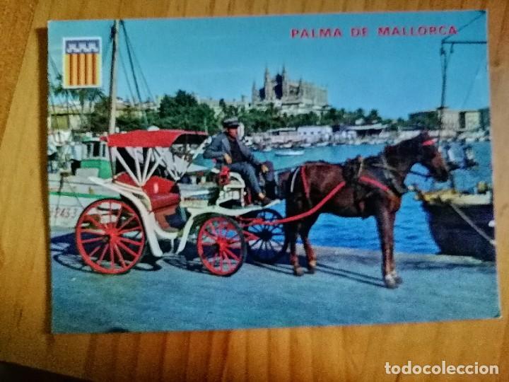 POSTAL - PALMA DE MALLORCA - VISTA, BAHIA Y CATEDRAL. (Postales - España - Baleares Moderna (desde 1.940))