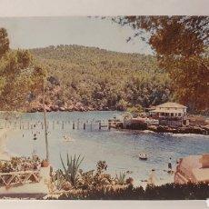 Cartes Postales: PLAYA DE CAMP DE MAR / MALLORCA /SIN CIRCULAR / (REF.D.196). Lote 231640695
