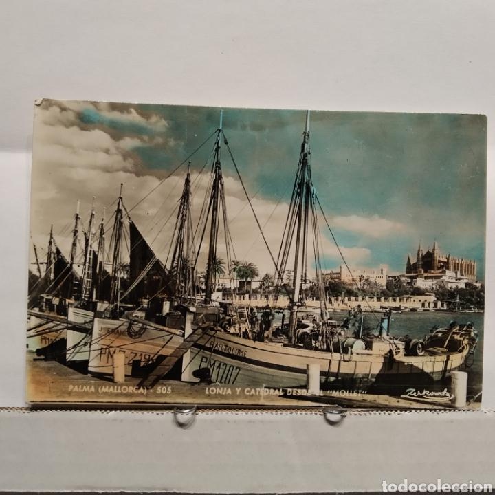 PALMA DE MALLORCA 505 LONJA Y CATEDRAL DESDE EL 'MOLLET' ZERKOWITZ, BARTOLOMÉ, FRANCESCA (Postales - España - Baleares Moderna (desde 1.940))
