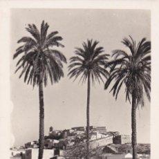 Postales: IBIZA, VISTA PARCIAL DESDE LAS PALMERAS. ED. VIÑETS Nº 64. SIN CIRCULAR. Lote 242201850
