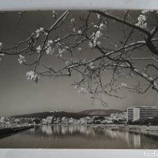 Postales: 2390 MALLORCA - PALMA. HOTELES EN EL PASEO MARITIMO. FOTO CASA PLANAS. PALMA. 1958. Lote 254435870