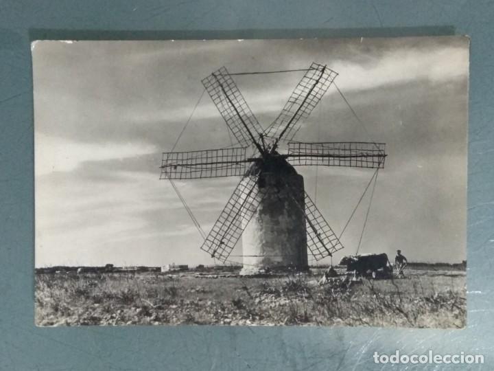 POSTAL FORMENTERA (BALEARES). LA MOLA. MOLINERO ARANDO. (Postales - España - Baleares Moderna (desde 1.940))