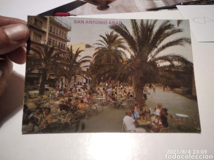 POSTAL SAN ANTONIO ABAD, IBIZA (Postales - España - Baleares Moderna (desde 1.940))