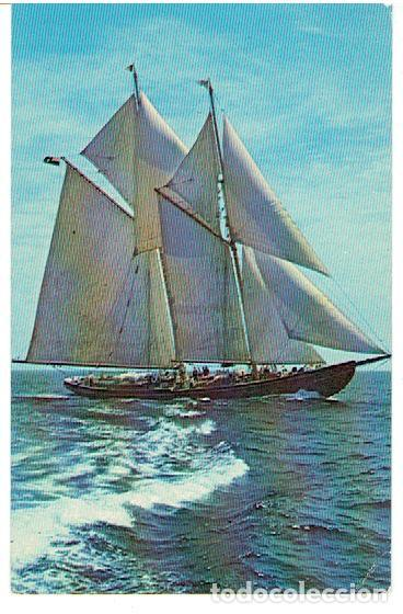 POSTAL, BARCO (Postales - Postales Temáticas - Barcos)