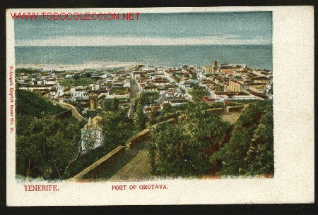 TENERIFE. PORT OF OROTAVA. NOBREGAS ENGLISH BAZAR NO. 20. NUEVA (Postales - España - Canarias Antigua (hasta 1939))