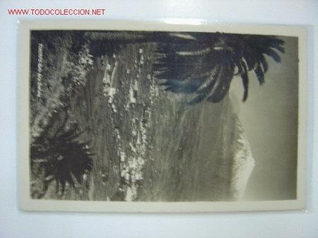 TENERIFE VALLE DE LA OROTAVA (Postales - España - Canarias Antigua (hasta 1939))