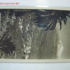 Postais: TENERIFE VALLE DE LA OROTAVA. Lote 10985196