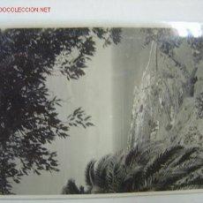 Cartoline: SANTA CRUZ PALMA VISTA GENERAL. Lote 13262794