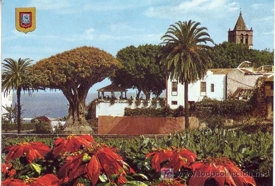 POSTAL DE TENERIFE,ICOD DE LOS VINOS. (Postales - España - Canarias Moderna (desde 1940))