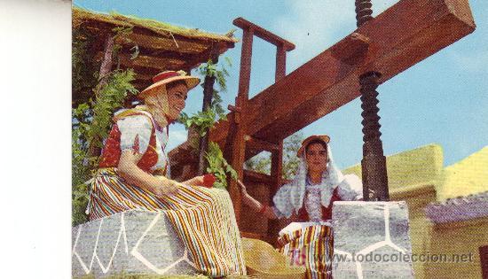TENERIFE. ROMERIA TIPICA. ISLAS CANARIAS. (Postales - España - Canarias Moderna (desde 1940))