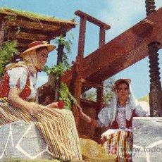 Postales: TENERIFE. ROMERIA TIPICA. ISLAS CANARIAS.. Lote 4626922