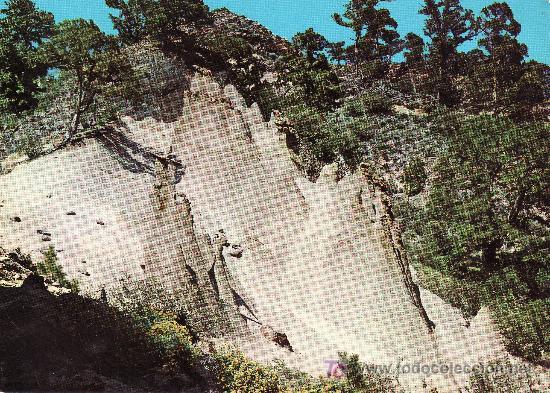 PAISAJE LUNAR -TENERIFE.ISLAS CANARIAS.FANTASIA DE LA NATURALEZA .NO CIRCULADA. (Postales - España - Canarias Moderna (desde 1940))