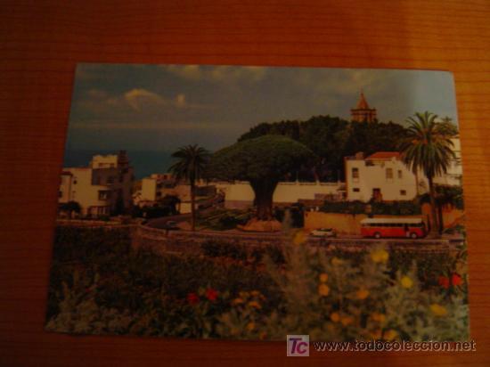 POSTAL TENERIFE DRAGO Y VISTA PARCIAL (Postales - España - Canarias Moderna (desde 1940))
