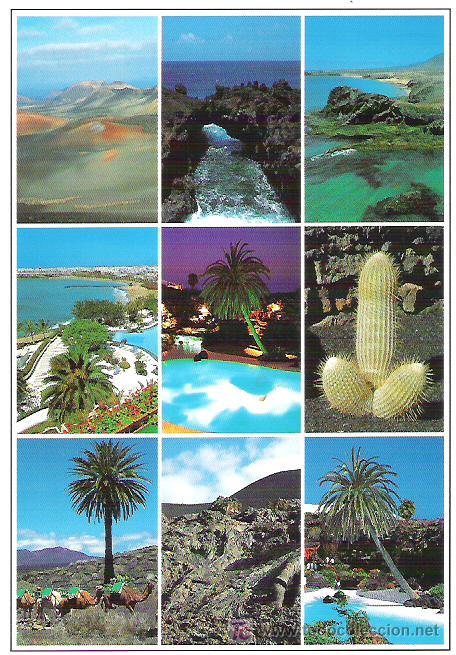 181 YL - LANZAROTE *** CIRCULADA (Postales - España - Canarias Moderna (desde 1940))
