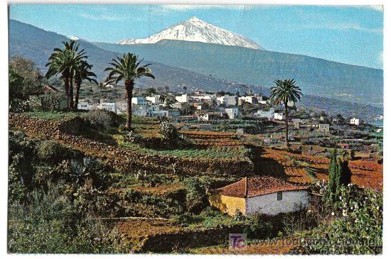 VALLE DE LA OROTAVA Y TEIDE (TENERIFE). EDITORIAL FARDI(BARCELONA) (Postales - España - Canarias Moderna (desde 1940))